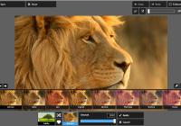 pixlr-express-lion